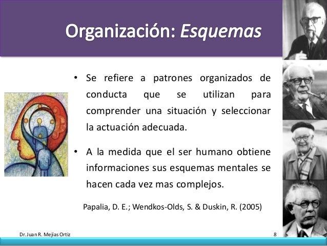 • Se refiere a patrones organizados de                             conducta     que    se utilizan   para                 ...