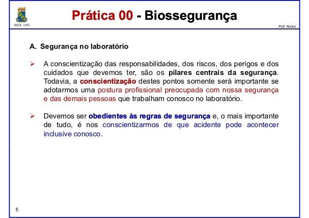 DQOI - UFC Prof. Nunes A. Segurança no laboratório A conscientização das responsabilidades, dos riscos, dos perigos e dos ...