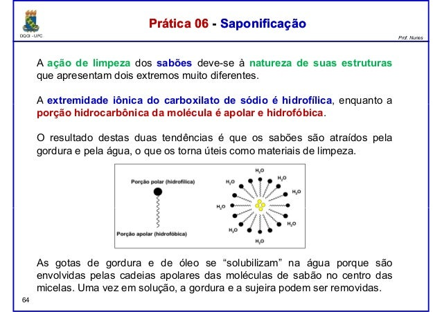 DQOI - UFC Prof. Nunes A ação de limpeza dos sabões deve-se à natureza de suas estruturas que apresentam dois extremos mui...
