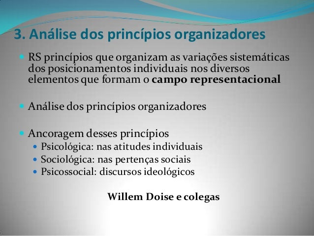 3. Análise dos princípios organizadores RS princípios que organizam as variações sistemáticas  dos posicionamentos indivi...