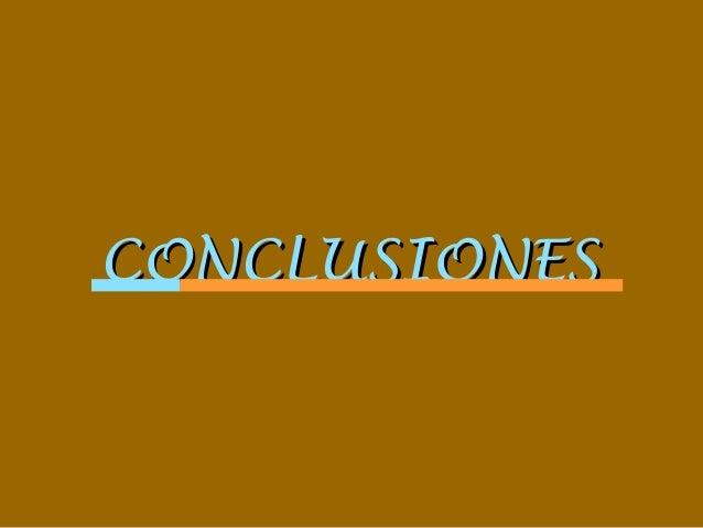 CONCLUSIONESCONCLUSIONES