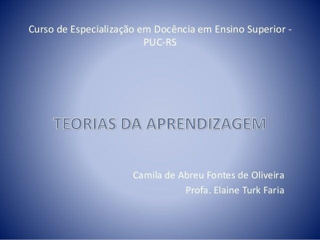 Curso de Especialização em Docência em Ensino Superior - PUC-RS Camila de Abreu Fontes de Oliveira Profa. Elaine Turk Faria