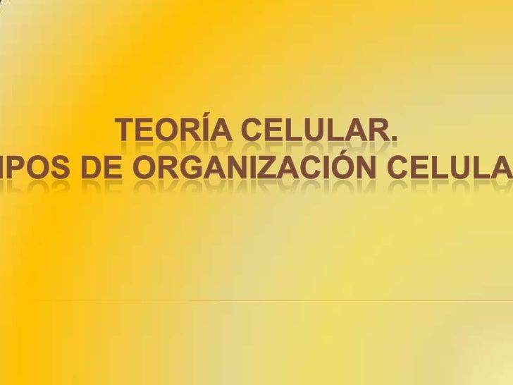 TEORÍA CELULAR.<br />TIPOS DE ORGANIZACIÓN CELULAR<br />