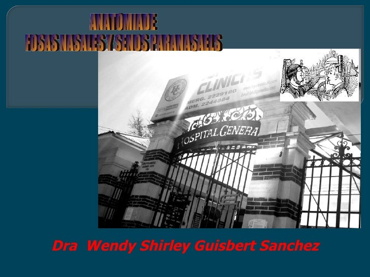 Dra Wendy Shirley Guisbert Sanchez