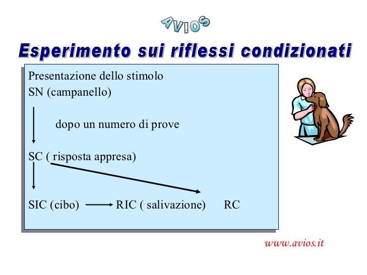 AVIOS www.avios.it Esperimento sui riflessi condizionati Presentazione dello stimolo SN (campanello) dopo un numero di pro...