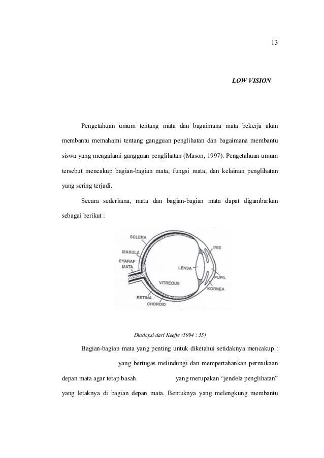 13 BAB II OPTIMALISASI FUNGSI SISA PENGLIHATAN ANAK LOW VISION  A. Indra Penglihatan Pengetahuan umum tentang mata dan bag...