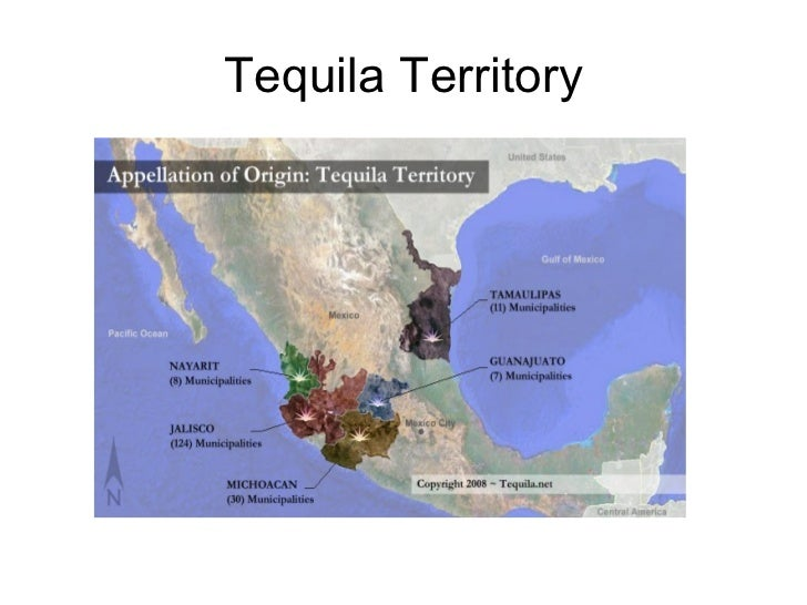 Tequila and the cocktails that made it famous