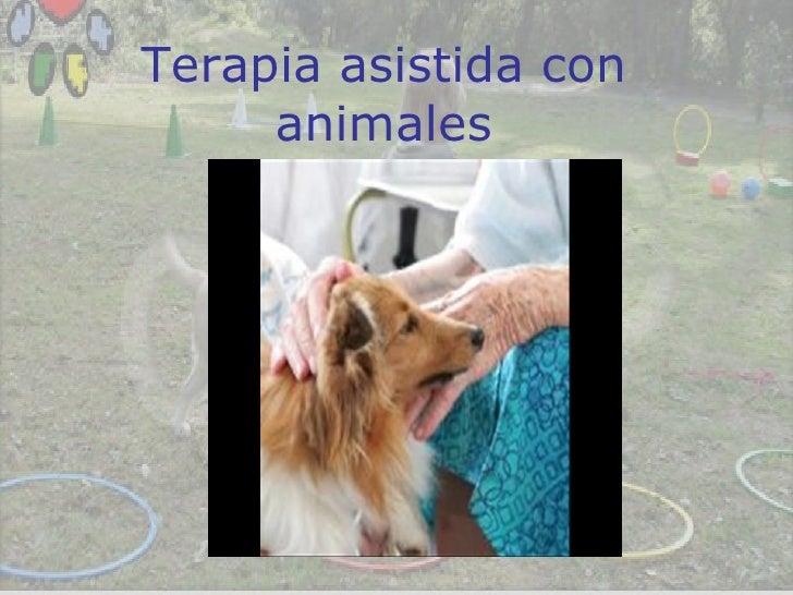 Terapia asistida con animales Presentación