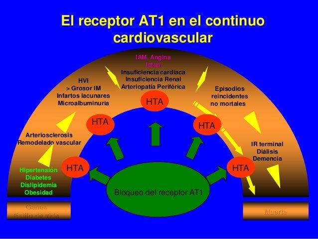 El receptor AT1 en el continuo cardiovascular Hipertensión Diabetes Dislipidemia Obesidad Arteriosclerosis Remodelado vasc...