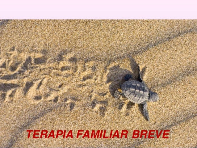 Terapia familiar breve