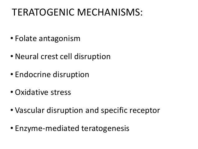 TERATOGENIC MECHANISMS: • Folate antagonism • Neural crest cell disruption • Endocrine disruption • Oxidative stress • Vas...