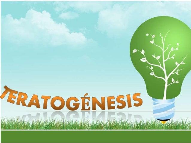 PRINCIPIOS DE TERATOGENIA Periodos críticos del desarrollo Genotipo ( constitución genética) del embrión Dosis del fármaco...