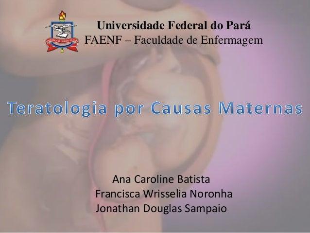 Universidade Federal do Pará FAENF – Faculdade de Enfermagem Ana Caroline Batista Francisca Wrisselia Noronha Jonathan Dou...