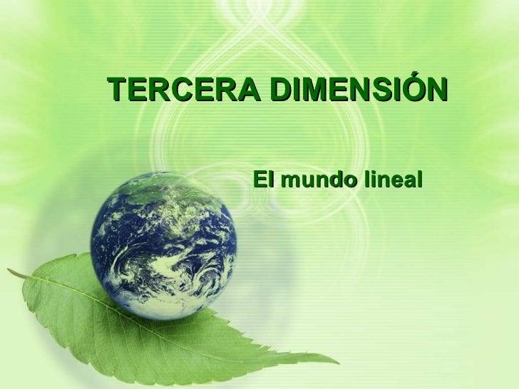 TERCERA DIMENSIÓN El mundo lineal