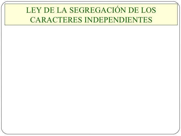 LEY DE LA SEGREGACIÓN DE LOS CARACTERES INDEPENDIENTES