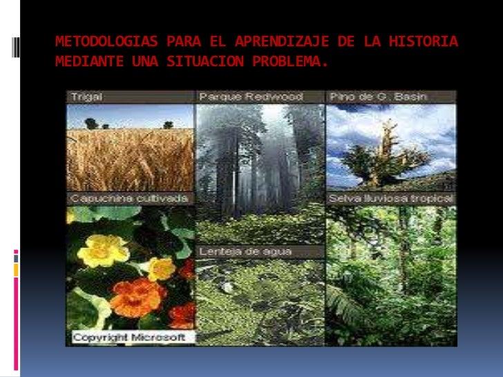 METODOLOGIAS PARA EL APRENDIZAJE DE LA HISTORIAMEDIANTE UNA SITUACION PROBLEMA. <br />