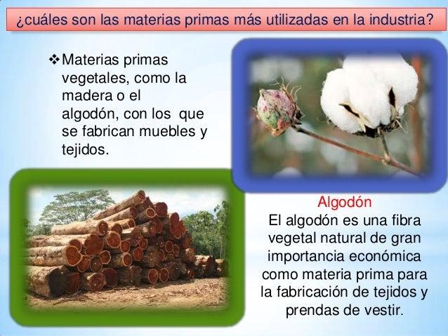 ¿cuáles son las materias primas más utilizadas en la industria? Materias primas vegetales, como la madera o el algodón, c...