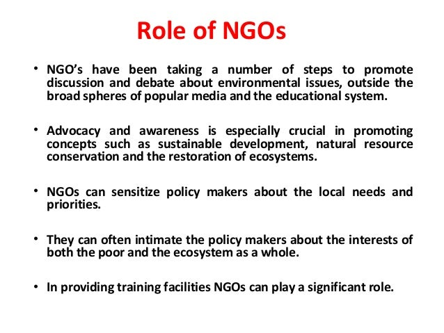 What Is the Role of NGOs?