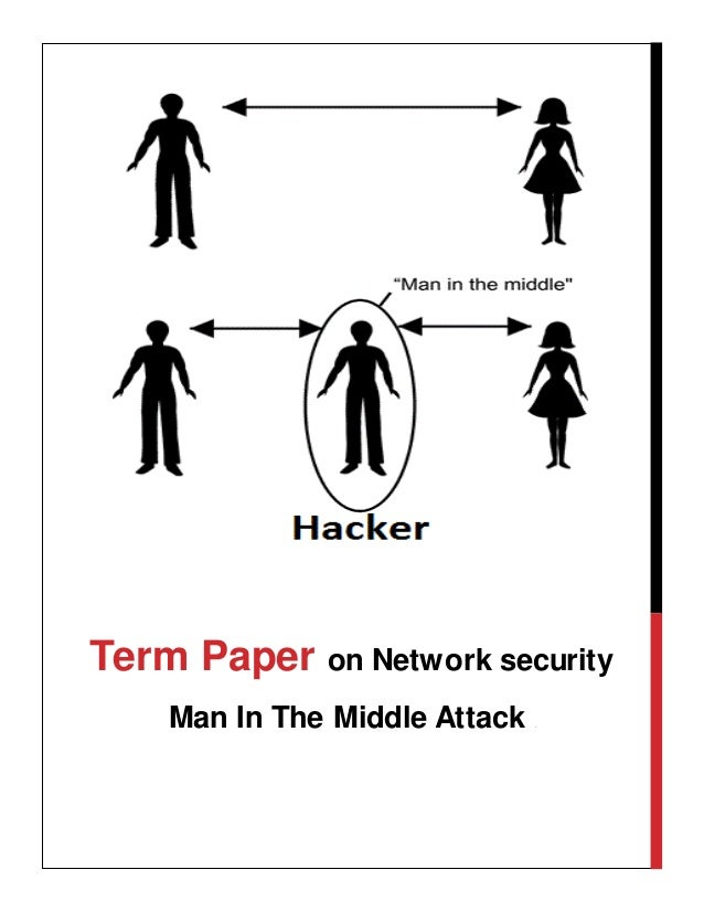 Network security term paper