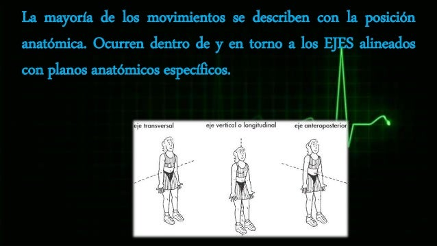 TERMINOLOGIA MÉDICA BÁSICA PARA EL ESTUDIO DE LA ANATOMÍA HUMANA