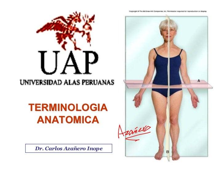 TERMINOLOGIA  ANATOMICA   Dr. Carlos Azañero Inope                  Dr. Carlos Augusto Azañero Inope                      ...