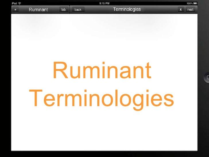 Ruminant Terminologies