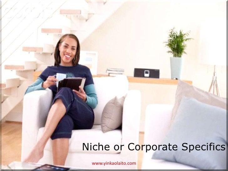 Niche or Corporate Specifics www.yinkaolaito.com