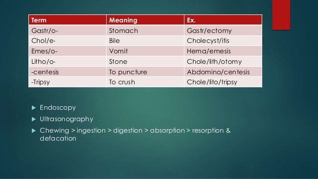 Medical Terminology of the body systems
