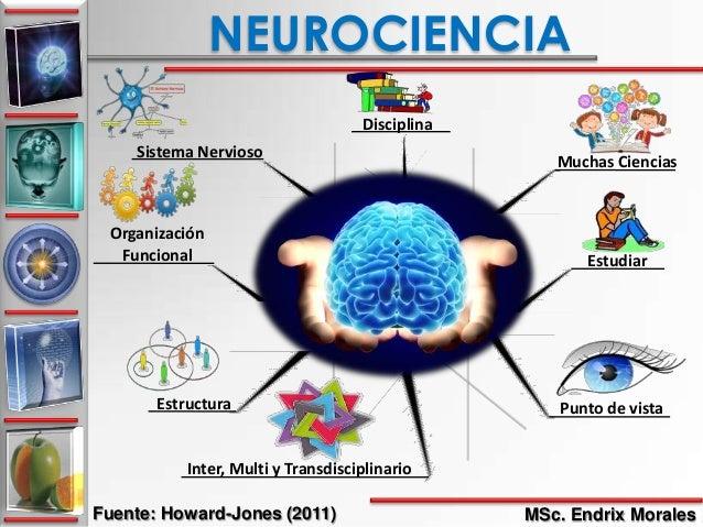 Reflexiones de Neurociencias y Educación. Endrix Morales