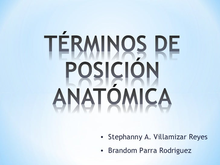 • Stephanny A. Villamizar Reyes• Brandom Parra Rodriguez