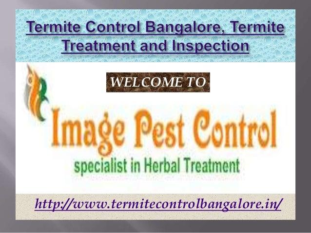 WELCOME TOhttp://www.termitecontrolbangalore.in/