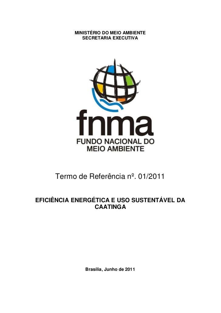 MINISTÉRIO DO MEIO AMBIENTE              SECRETARIA EXECUTIVA     Termo de Referência nº. 01/2011EFICIÊNCIA ENERGÉTICA E U...