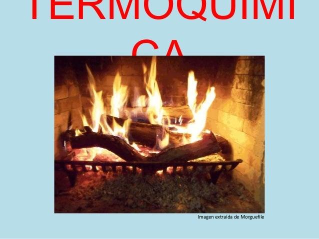 TERMOQUÍMI CA Imagen extraída de Morguefile