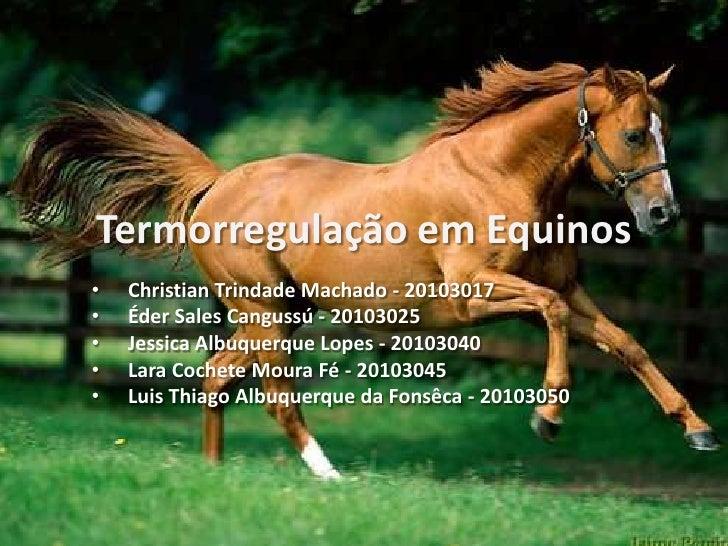 Termorregulação em Equinos•   Christian Trindade Machado - 20103017•   Éder Sales Cangussú - 20103025•   Jessica Albuquerq...