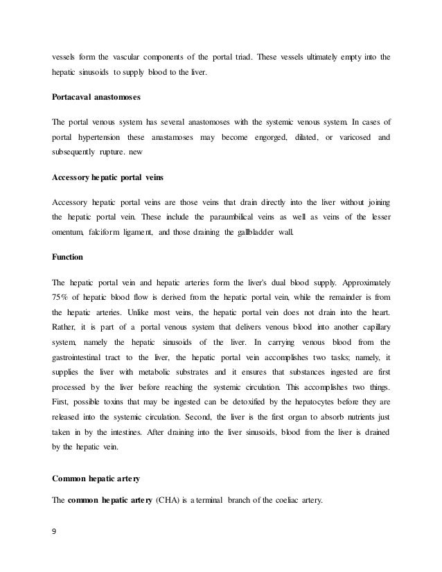 term paper app Application essay should be considered as one of the most serious types of analytical essay writing exercise in the life of a student every year, thousands of applications are submitted for admission into college and the admission authorities find it difficult to evaluate every student on a personal basis.