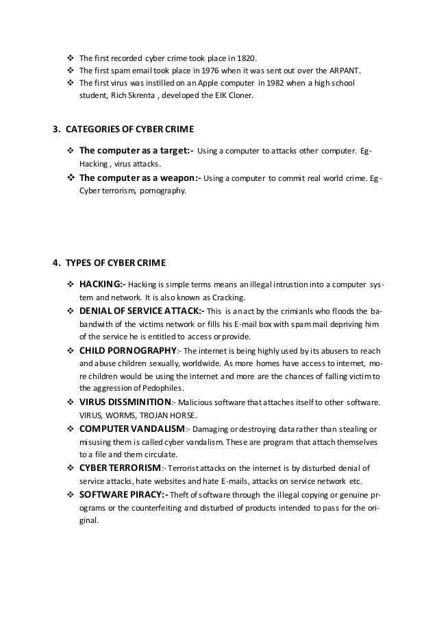 computer security term paper