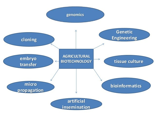biotechnology and intellectual property rights Biotechnology generally concerns the application of cellular and molecular biology to make or application of intellectual property rights in developing.