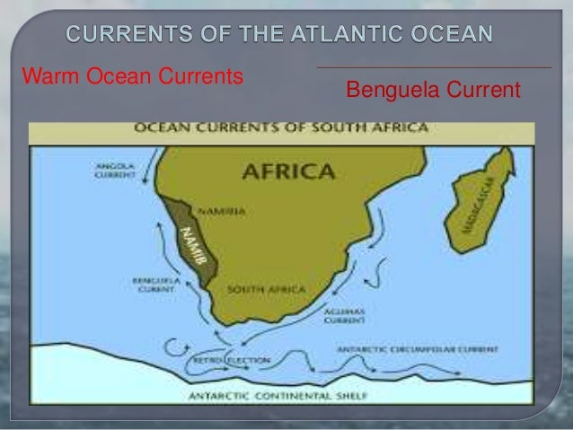 Major oceanic currents of the world benguela current warm ocean currents 12 gumiabroncs Image collections
