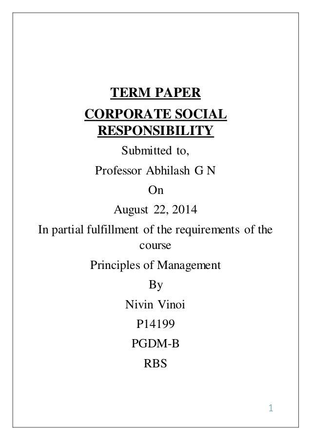 Social responsibility term paper