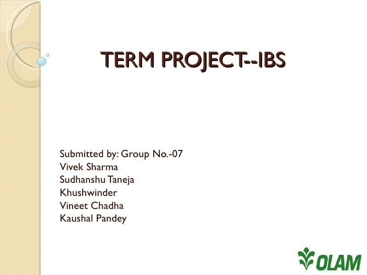 TERM PROJECT--IBS Submitted by: Group No.-07 Vivek Sharma Sudhanshu Taneja Khushwinder Vineet Chadha Kaushal Pandey