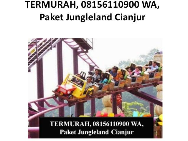Terbaik 08156110900 Wa Paket Tour Jungleland Dari Cianjur