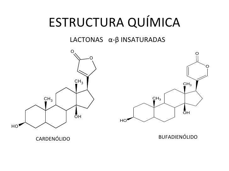 terpenos e esteroides