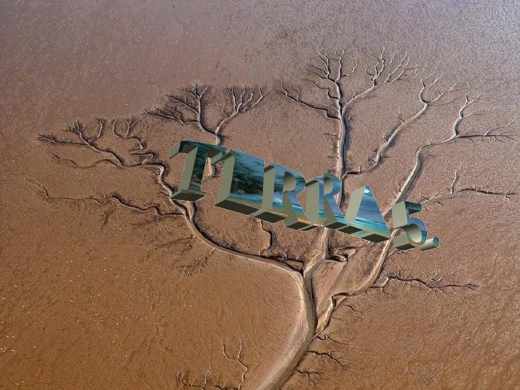 Terra 5