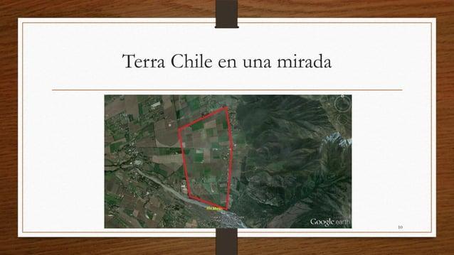 Terra Chile en una mirada                            10