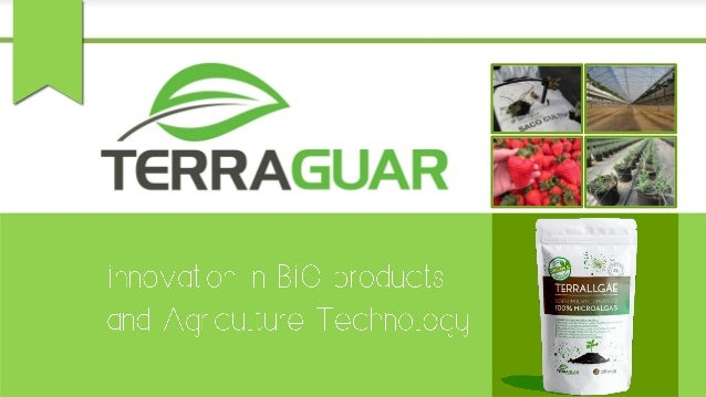 HIGH QUALITY MICROALGAE ▪ Closed, controlled production systems ▪ Intensive Lab analysis plan  maximum product safety ▪ IS...