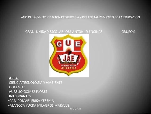 AÑO DE LA DIVERSIFICACION PRODUCTIVA Y DEL FORTALECIMIENTO DE LA EDUCACION GRAN UNIDAD ESCOLAR JOSE ANTONIIO ENCINAS GRUPO...