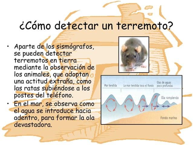 ¿Cómo detectar un terremoto?• Aparte de los sismógrafos,  se pueden detectar  terremotos en tierra  mediante la observació...