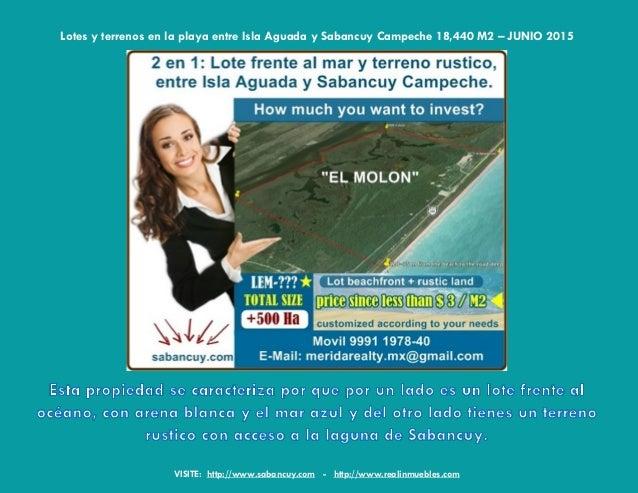Lotes En Playas Virgenes Entre Isla Aguada Y Sabancuy: Terrenos En-la-playa-playas-isla-aguada-sabancuy-campeche