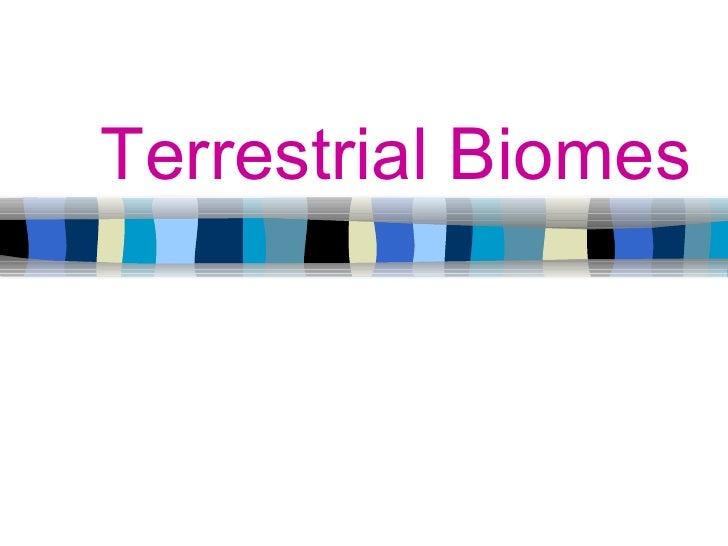 Terrestrial Biomes By Emily Rueber