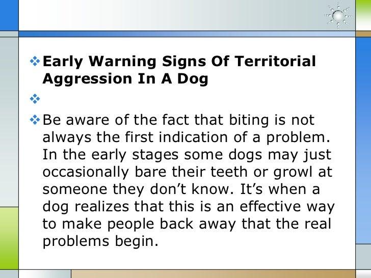 Stop Dog Biting Fast